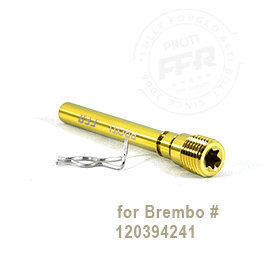 S1000XR Front Caliper Pin